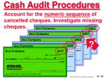 cash audit procedures46