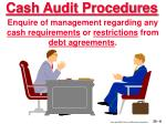 cash audit procedures8