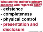 what are the auditor s primary concerns with regard to cash6