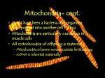 mitochondria cont