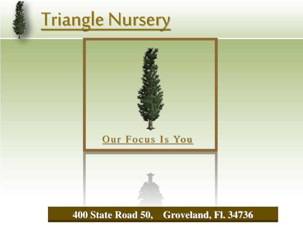triangle nursery l.