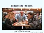biological process45