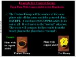 example for control group f rom plant with copper added to soil hypothesis