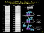 il 1 dependent kai1 gene induction based on a corepressor coactivator exchange