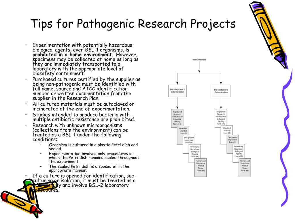 Tips for Pathogenic Research Projects