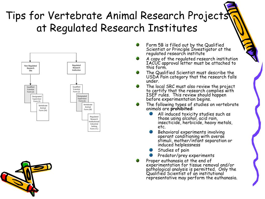Tips for Vertebrate Animal Research Projects