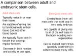 a comparison between adult and embryonic stem cells