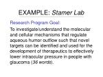example stamer lab