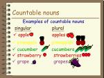 countable nouns7