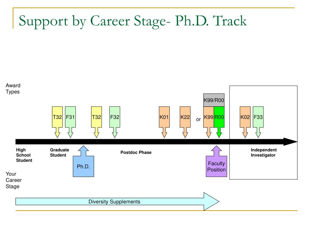 Support by Career Stage- Ph.D. Track
