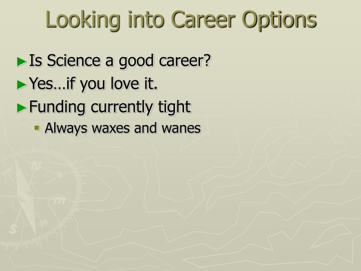 Looking into Career Options
