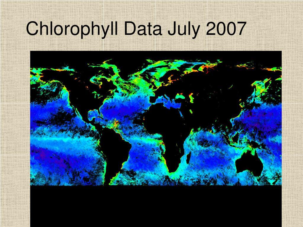 Chlorophyll Data July 2007