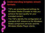 understanding template stream formats