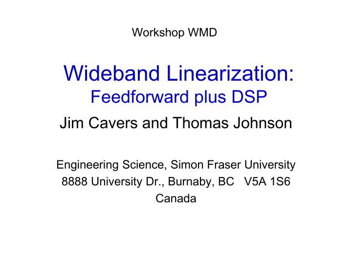 wideband linearization feedforward plus dsp n.