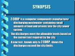 synopsis5