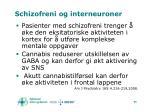 schizofreni og interneuroner96