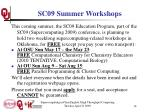 sc09 summer workshops