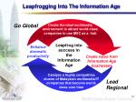 leapfrogging into the information age
