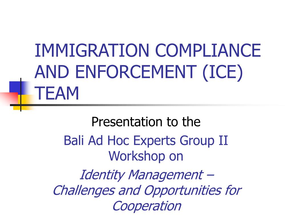 immigration compliance and enforcement ice team l.