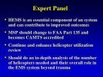 expert panel7