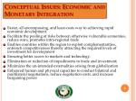 conceptual issues economic and monetary integration