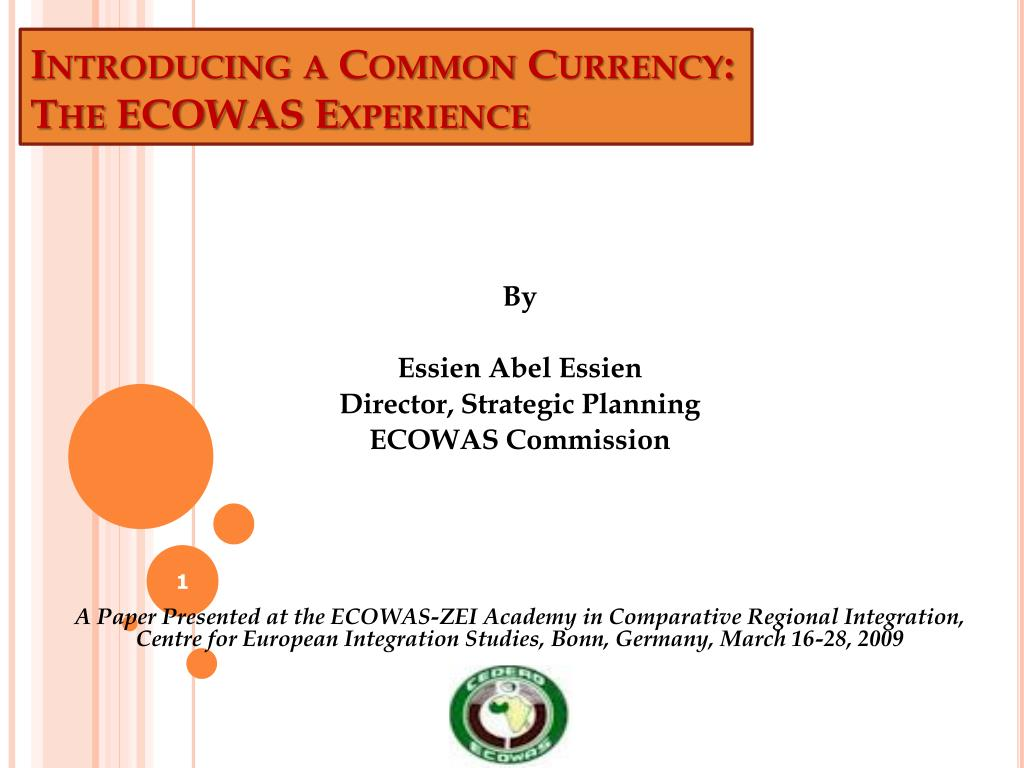 introducing a common currency the ecowas experience l.