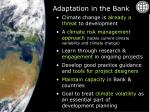adaptation in the bank