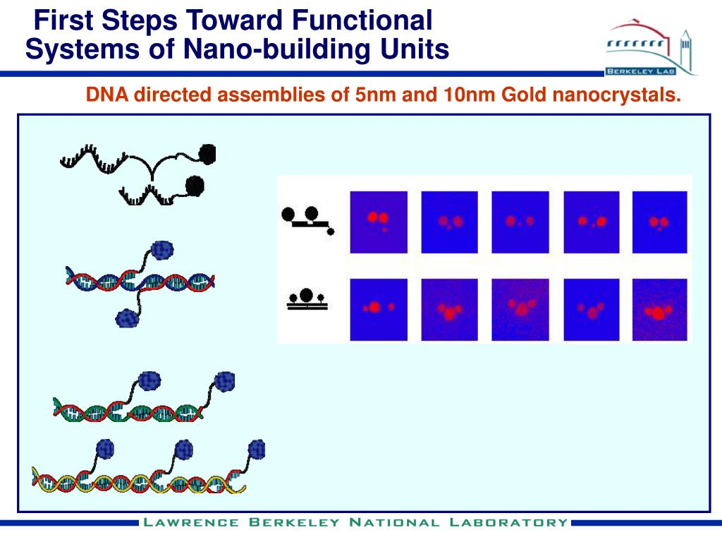 First Steps Toward Functional Systems of Nano-building Units