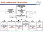 molecular foundry organization