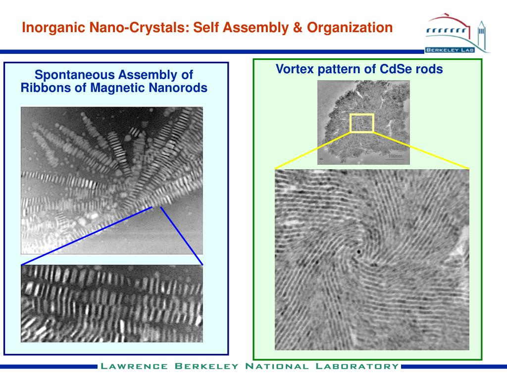 Vortex pattern of CdSe rods