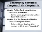 bankruptcy statutes chapter 7 vs chapter 11