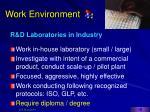 work environment16