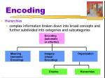 encoding7