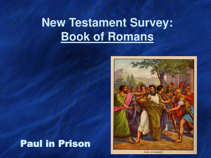 new testament survey book of romans n.