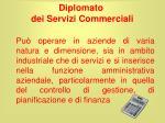 diplomato dei servizi commerciali