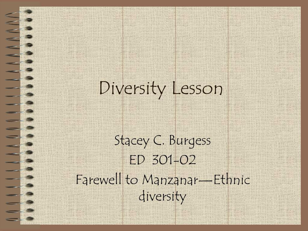 diversity lesson l.