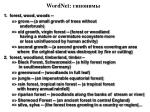 wordnet10