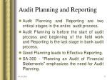 audit planning and reporting