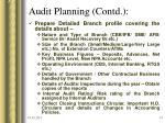 audit planning contd