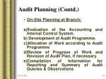 audit planning contd14