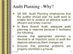 audit planning why