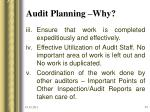 audit planning why23