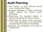 audit planning11