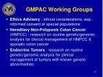gmpac working groups