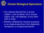 human biological specimens