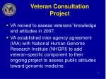 veteran consultation project