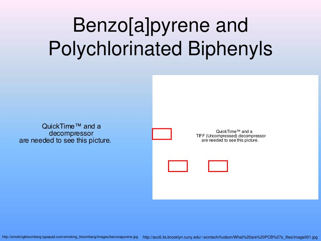 benzo a pyrene and polychlorinated biphenyls l.