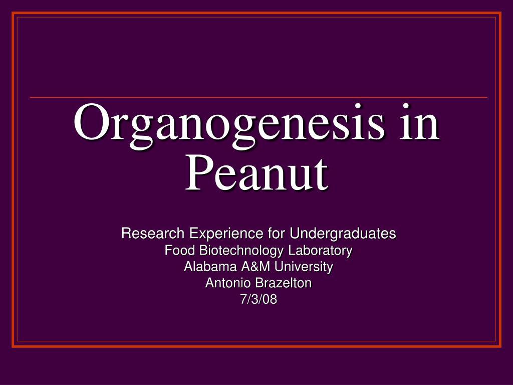 organogenesis in peanut l.