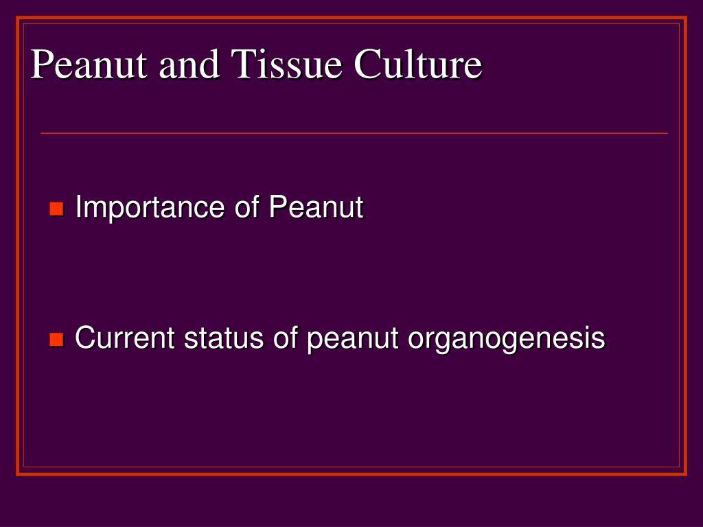 Peanut and Tissue Culture