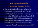 plant growth regulator p g r